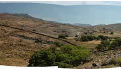 Open spaces with phrygana (degraded scrub) in the western part of the island.